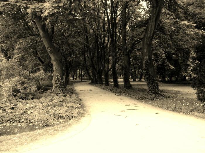 spacer w Łazienkach